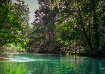 Weeki Wachee River - Spring Hill, Florida