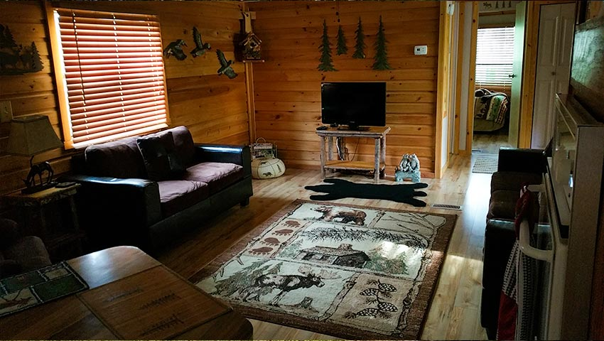 850-cabin-living-room